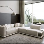 fancy-living-room-view-modular-sofas-bookcase-design-ideas