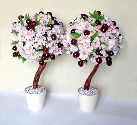 Фото цветов топиария по фен шуй