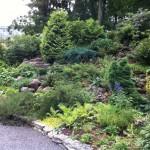 в-ботаническом-саду-1024x764