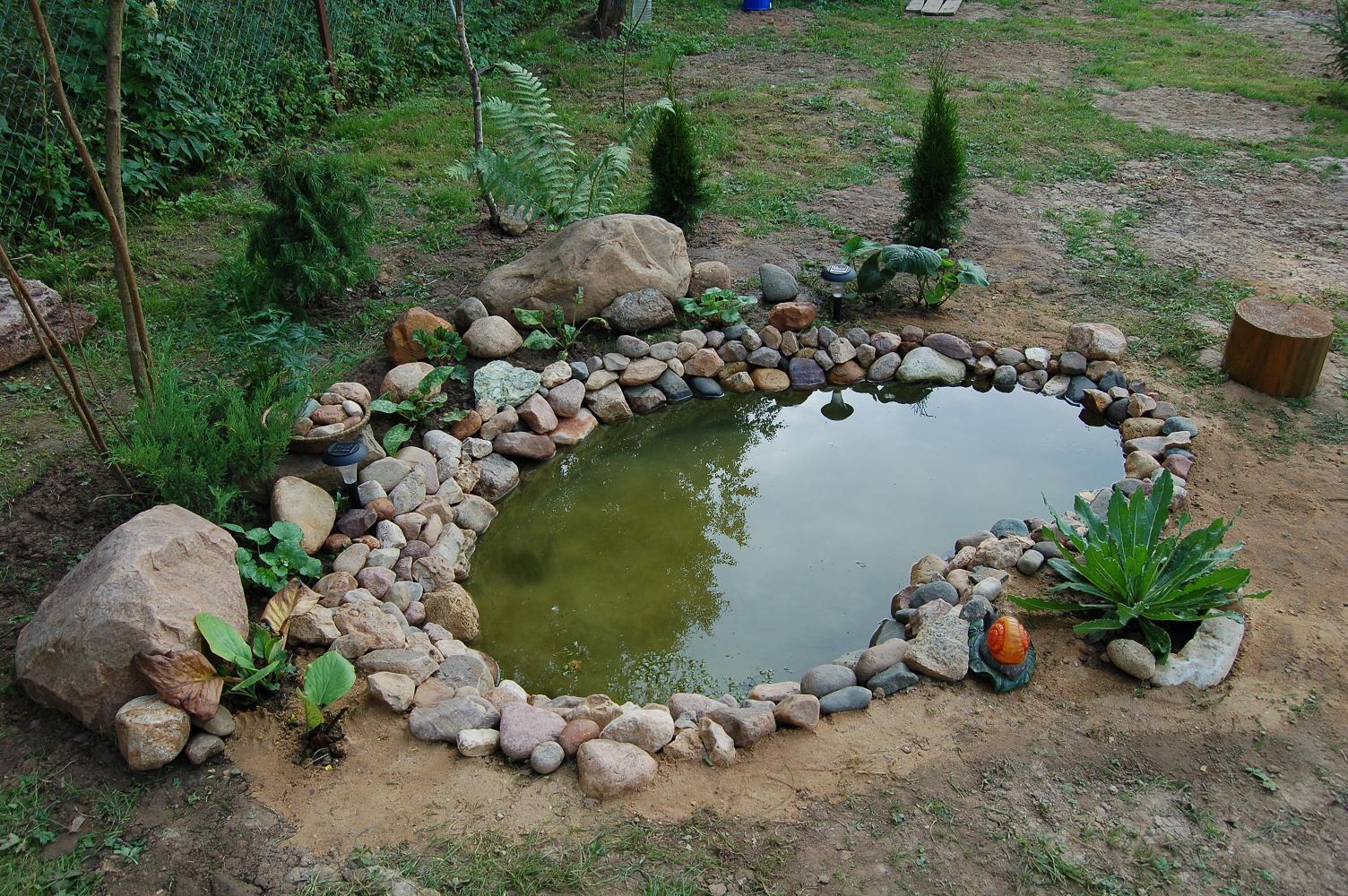 бассейн в саду своими руками фото
