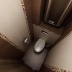 1358586614_dizayn-tualeta-malenkogo-razmera