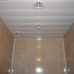 1445164945_potolok-tualet