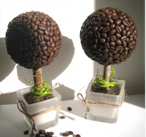Кофейные деревья (40 фото как создать топиарий) 53