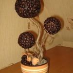 7-topiary