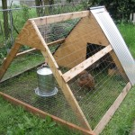 A-frame_chicken_coop_Portland_OR-1024x768