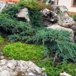 Alpiyskaya-gorka-035