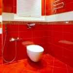 The image of an interior of a toilet room in red colour