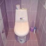 cvet_plitki_v_tualete2
