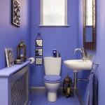 interyer tualeta61