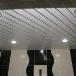 lath ceiling_2