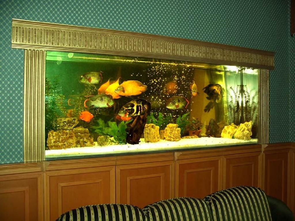 пример большого встроенного в пол аквариума