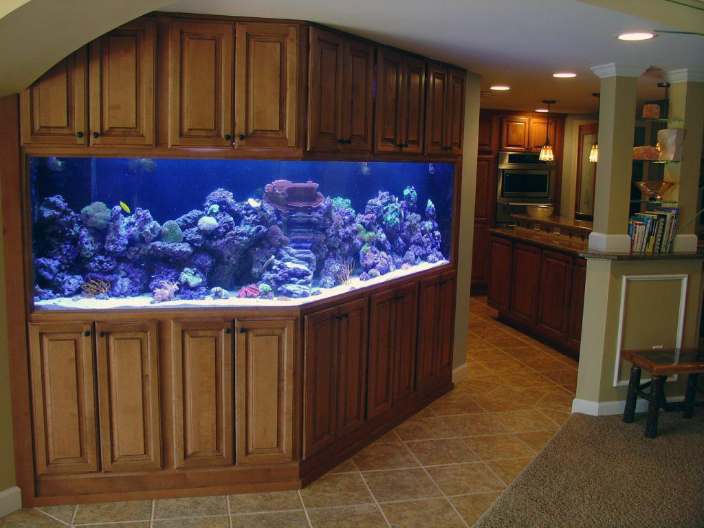 идея маленького встроенного в перегородку аквариума