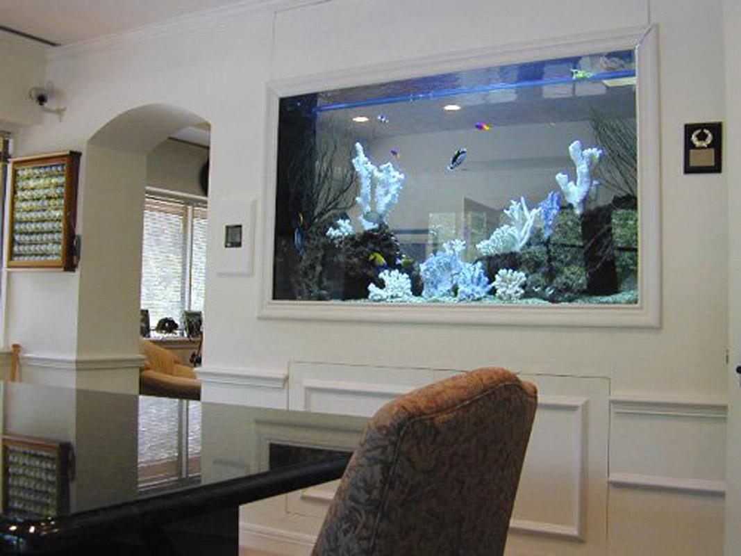 идея большого встроенного в декоративную перегородку аквариума