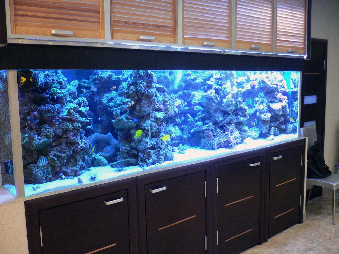 вариант маленького встроенного в пол аквариума
